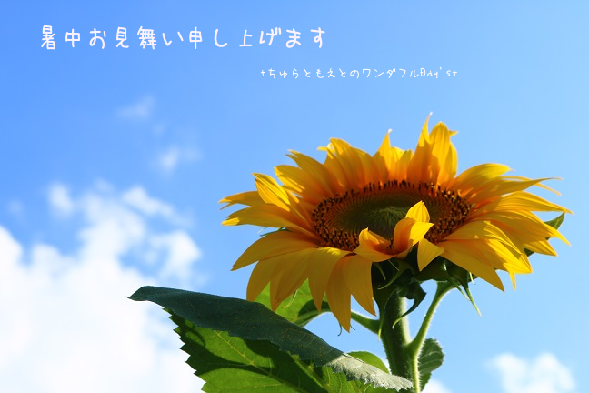 2016072512.png