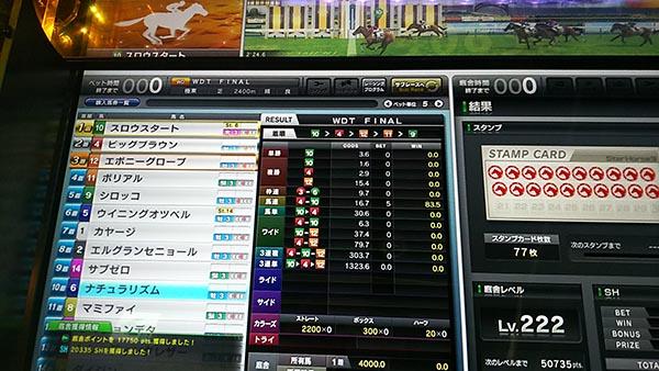 DSC_0034_s.jpg