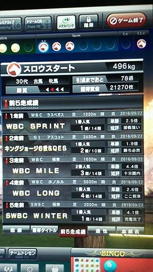 DSC_0049_s.jpg