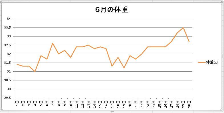 6月の体重2016