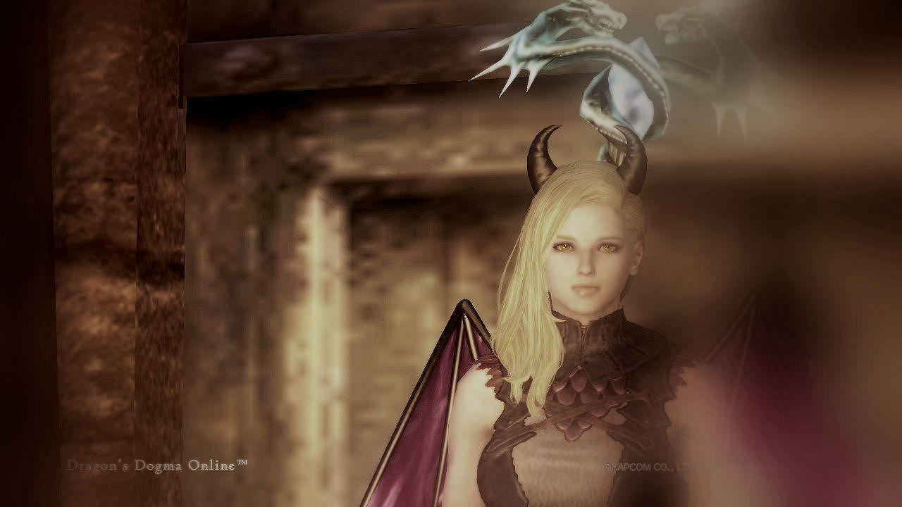 Dragons Dogma Online_129BS