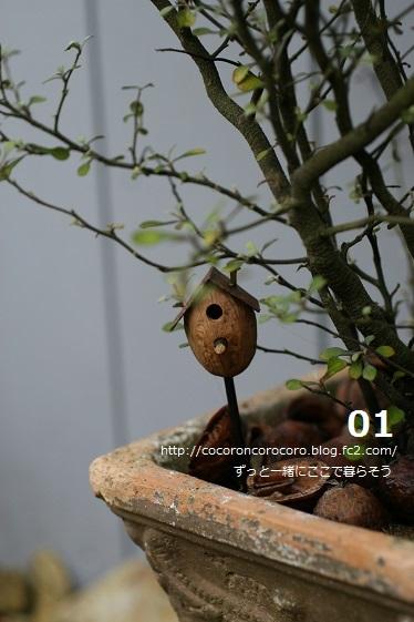 9月11日のブログ2