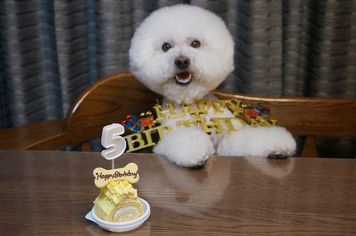 5歳ケーキ5