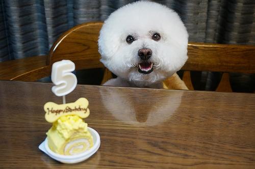 5歳ケーキ3