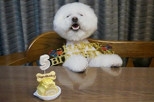 5歳ケーキ7