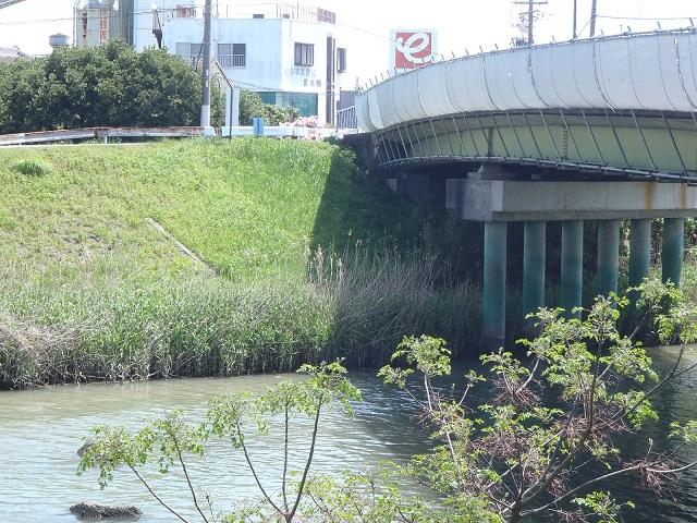 今之浦河橋改修工事 1 外観