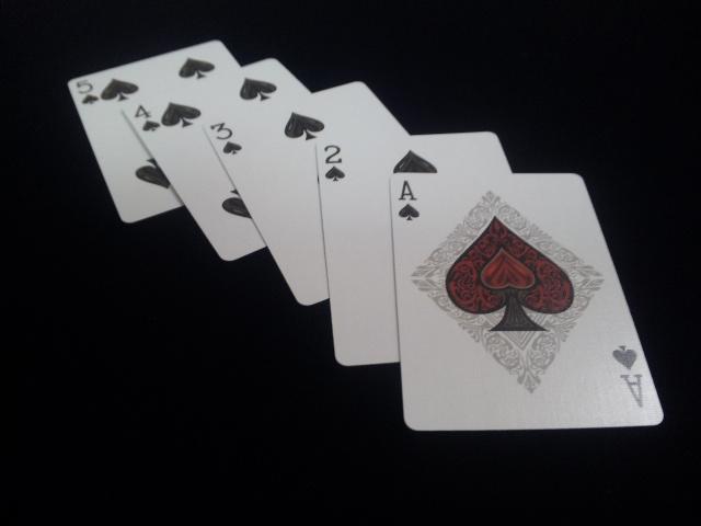 Royal Scarlet Playing Cards (7)