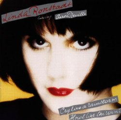 Linda Ronstadt / Cry Like a Rainstorm (1989年)