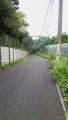 matugaya_160812.jpg