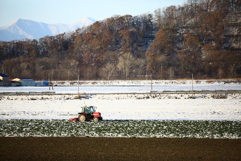146 雪を被った畝0001