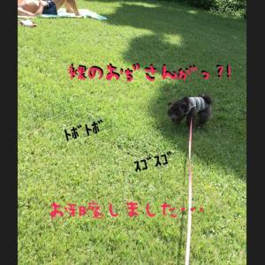 fc2blog_20160903121548252.jpg