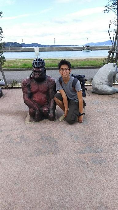 nice gorila