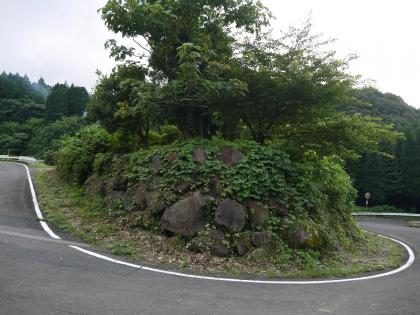 蕨野の棚田(1)
