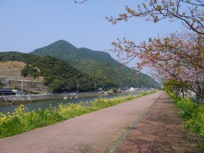 佐々川(3)