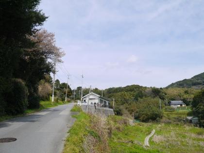 国道から山道へ