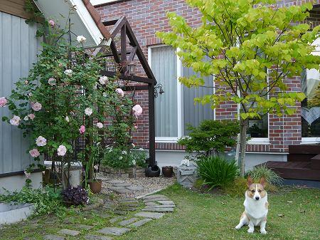 160520daichi(1).jpg