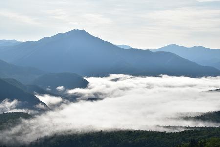 160628黒岳 (7)