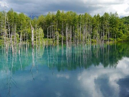 160629青い池 (4)