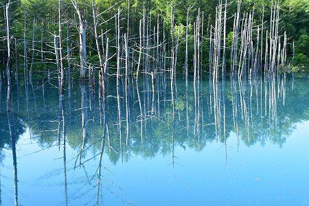 160629青い池 (6)