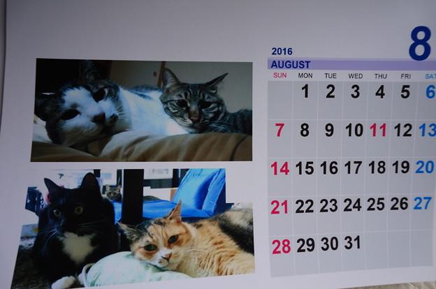 2017.8のカレンダー