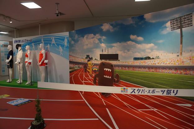 リオオリンピック応援コーナー