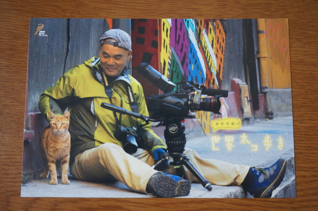世界ネコ歩きポストカード