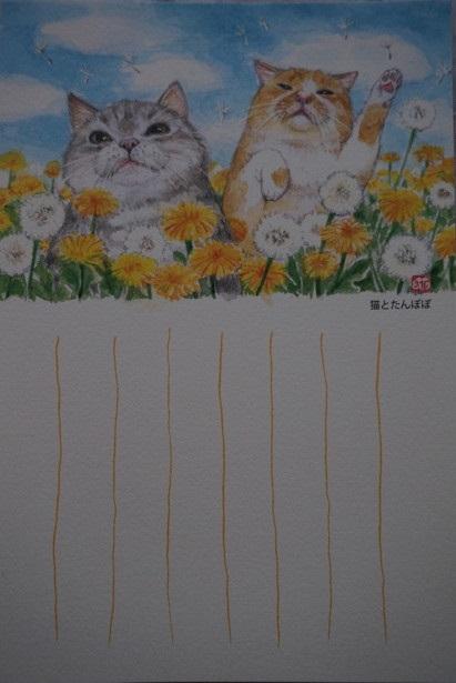 たんぽぽと猫