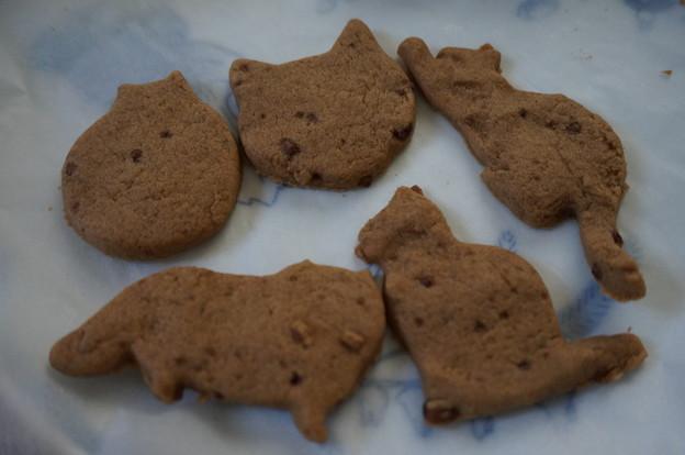 黒糖クッキー コーヒー風味