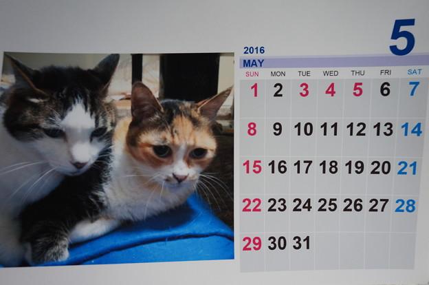 2016.5のカレンダー