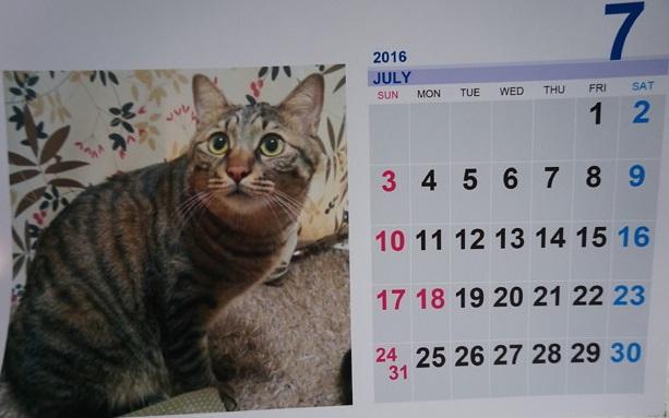 2016.7のカレンダー