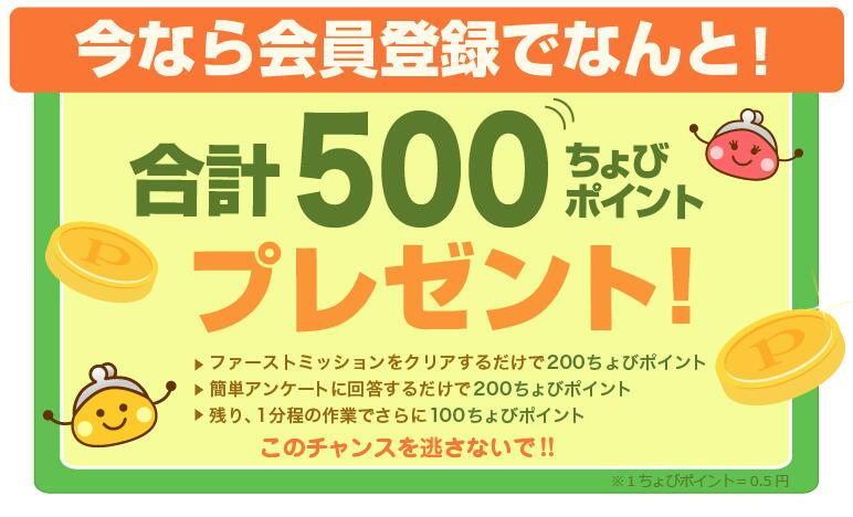 chbr-int500pt.jpg
