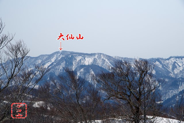 yz8a1n71_02.jpg