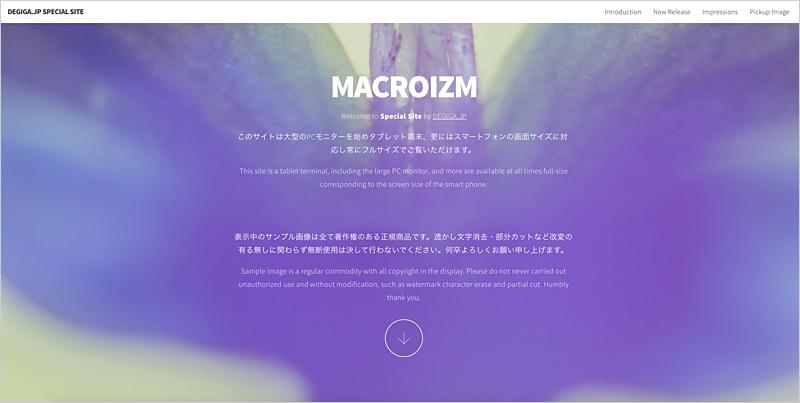 macroizm_sp