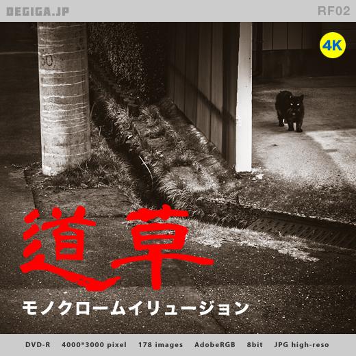 DVD『道草・モノクロームイリュージョン』紹介