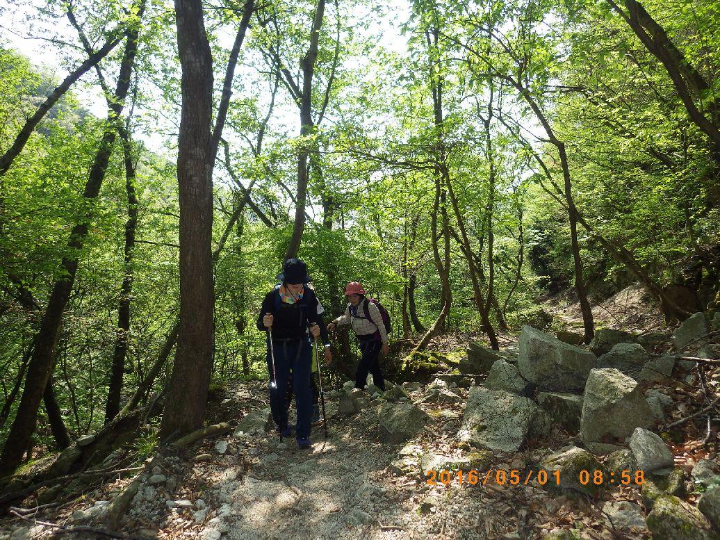 正面谷を登る