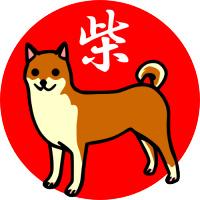 shibainu-2.jpg