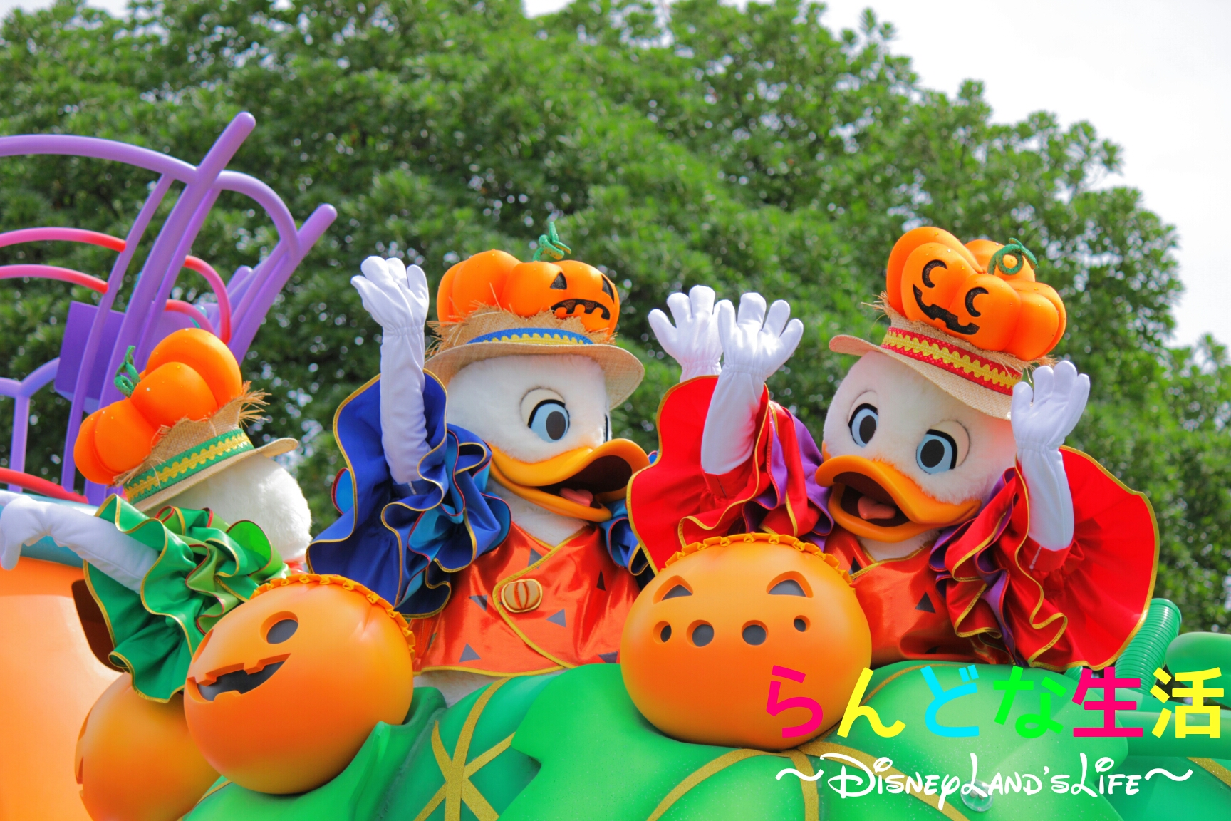Halloween16_甥っ子001.jpg