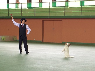 160507田所ジョイ丸