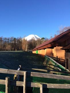 富士山201610用