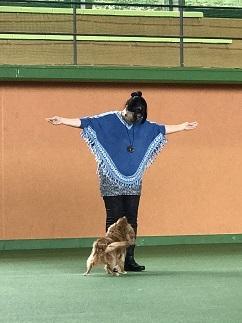 17柴田こうめ