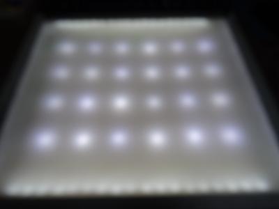 DSC03076.jpg