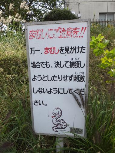 小鮎川のマムシ注意看板
