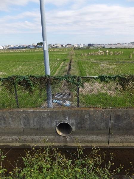 歌川分流排水路・田んぼの余水排水施設