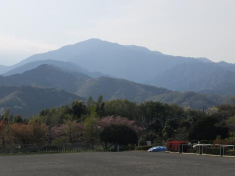 伊勢原総合運動公園より大山を望む