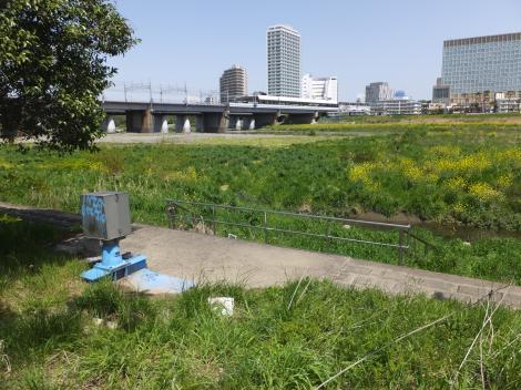 平瀬川浄化施設放流口