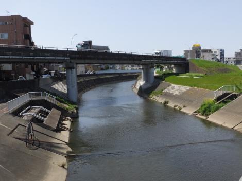 平瀬川河口より上流を望む