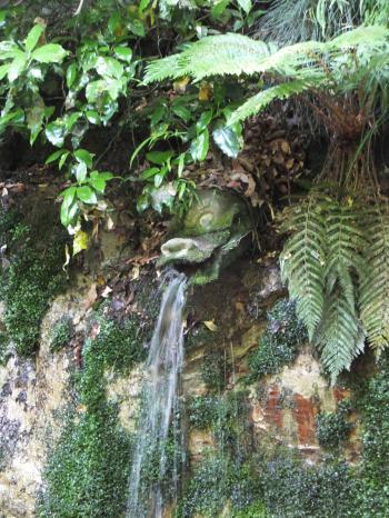 等々力渓谷不動の滝