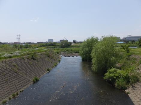 玉川排水樋管下流の谷沢川
