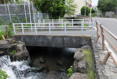 谷沢川左岸より丸子川下流を望む