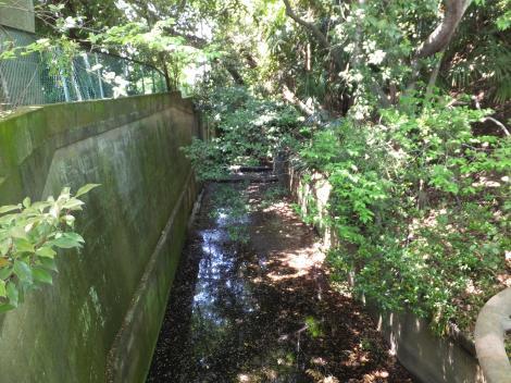 六郷用水樋管付近の旧六郷用水路